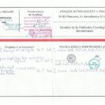 BRUNO WYNIK BADAŃ BIODER I ŁOKCI, PIES REPRODUKTOR