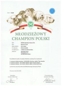 DYPLOM MŁ.CH.PL POLI
